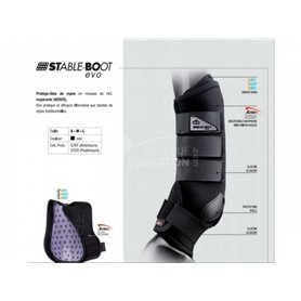 Stable Boots Anterieurs