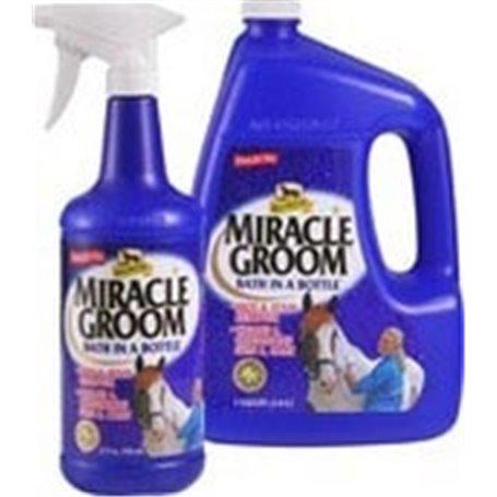 MIRACLE GROOM
