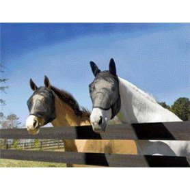 Fly mask, masque anti-mouches