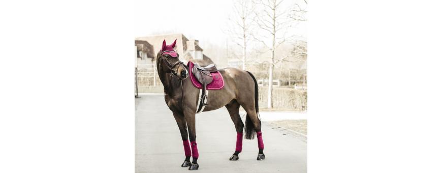 Tapis de selle cheval KENTUCKY